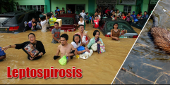 Closer look on Leptospirosis